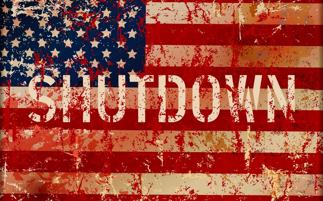 american flag with words shutdown